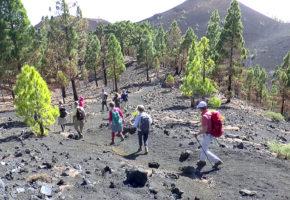 La Palma Vandrar nedför Vandramera - Vandringsresor