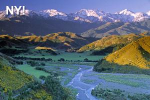 Nya Zealand Thumbnail